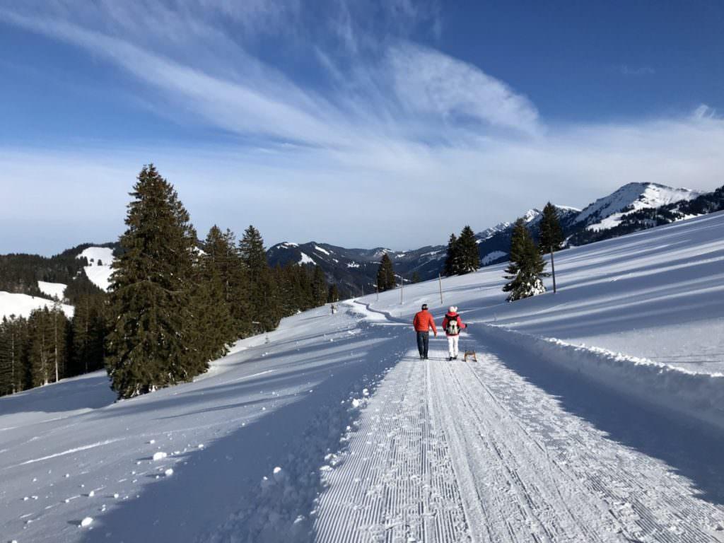 Winterwandern Bayern - so schön war´s in Oberstaufen
