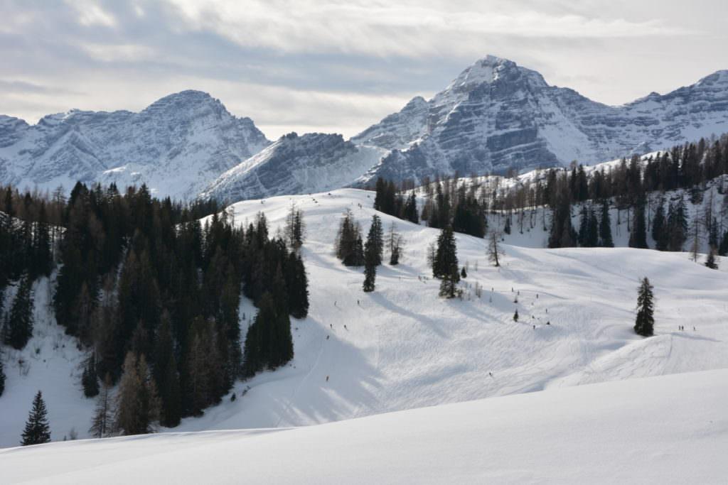 Winterwandern Salzburger Land - über das Winterwunderland auf die verschneiten Loferer Steinberge schauen