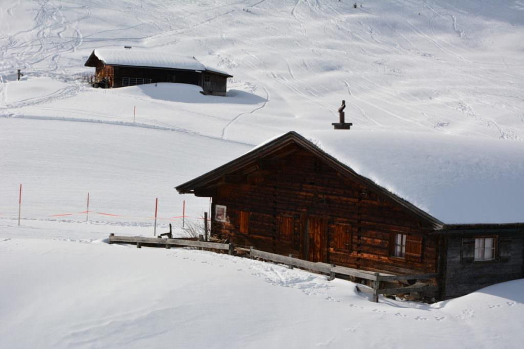 Winterwandern Salzburger Land - in Lofer auf der Alm wandern