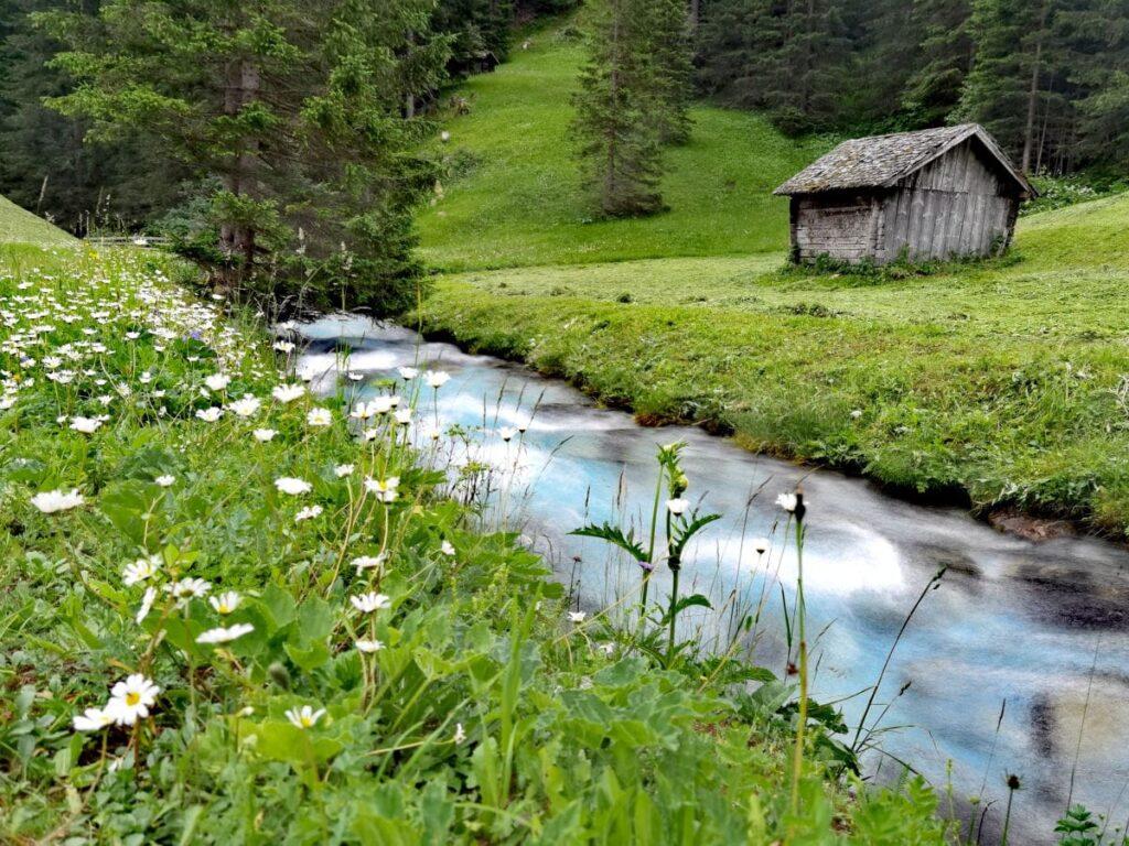 Von Almi´s Berghotel kommst du in wenigen Minuten zu Fuß hierher an den Bach