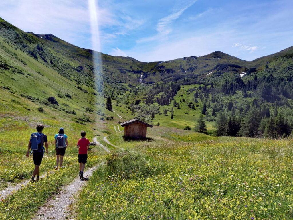 Oberhalb des Obernberger See panoramareich über die Almwiesen wandern