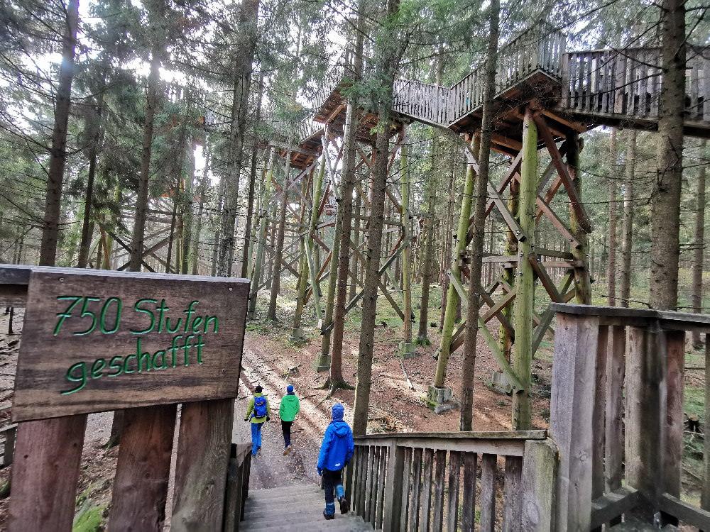 Ausflugsziele mit Kindern - an der Grenze zu Deutschland: Der Baumkronenweg