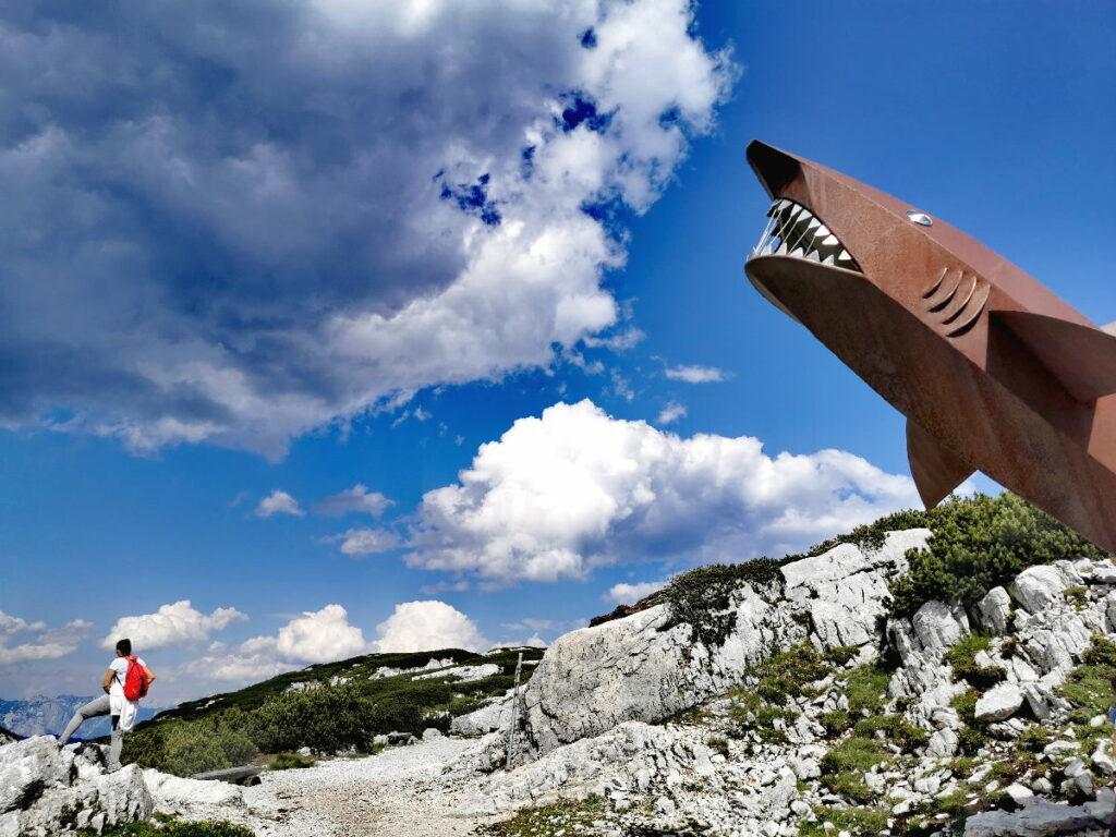 Besuch beim Dachstein Hai