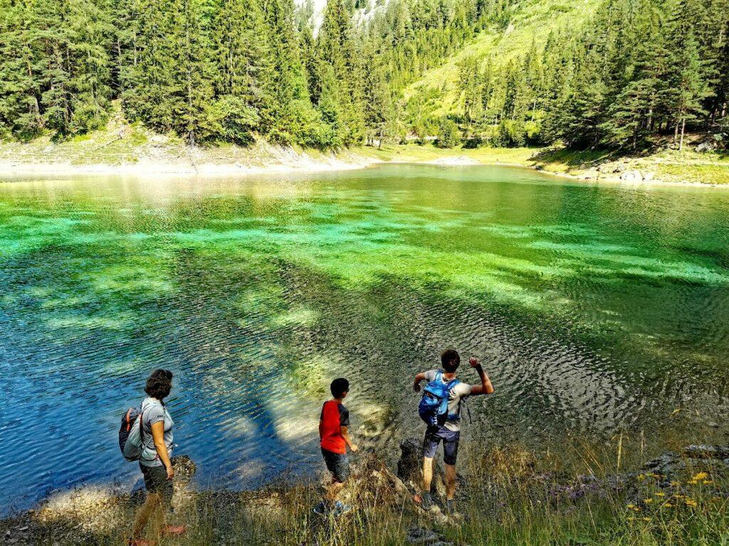 Unser erlebnisreicher Tag: Wanderung vom Familienhotel am See rund um den Grünen See
