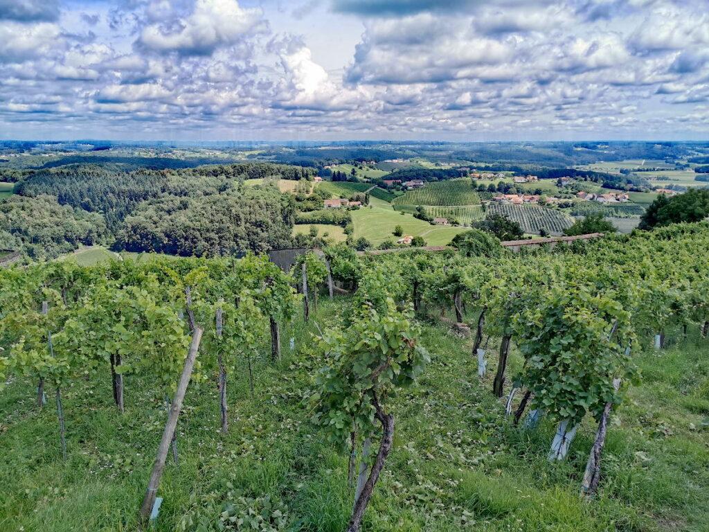 Familienurlaub Steiermark - zwischen den Weinbergen und dem hügeligen Land