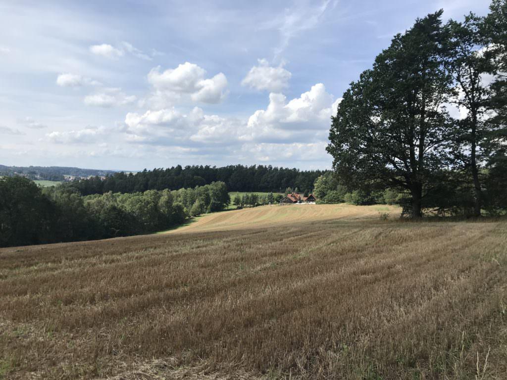 Franken wandern mit Kindern - vorbei an Wald und Wiesen