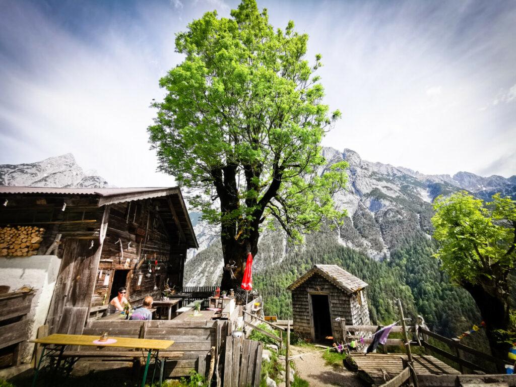 Zur Ganalm in Tirol wandern mit Kinderwagen