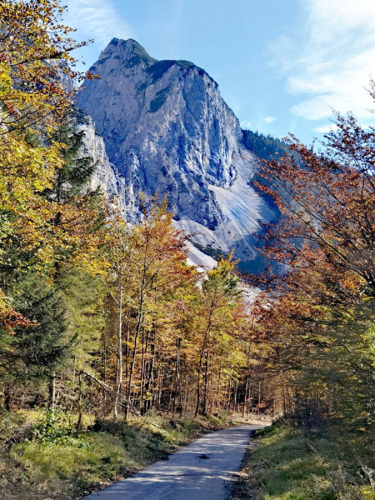 Kinderwagen Wanderung in Tirol - im Herbst durch das Halltal