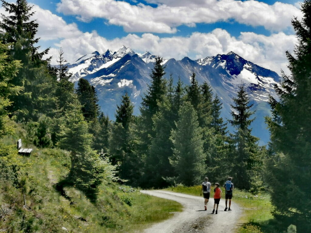 Mit dem Blick auf die Zillertaler Alpen zur Kreuzwiesenalm wandern