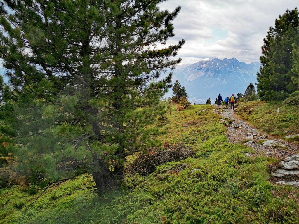 Die Patscherkofel Wanderung in Innsbruck
