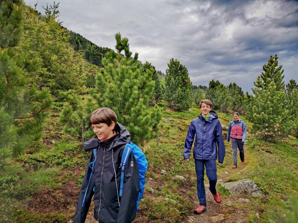 Durch den besonderen Zirbenwald stimmungsvoll am Patscherkofel wandern