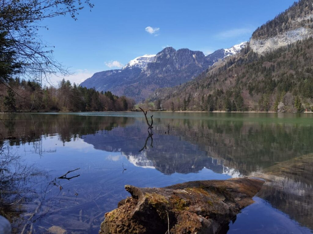 Sommerurlaub mit Kindern in der fantastischen Natur im Alpbachtal
