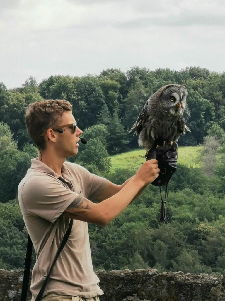 Weiz Ausflug mit Kindern: Die Greifvogelschau auf der Riegersburg