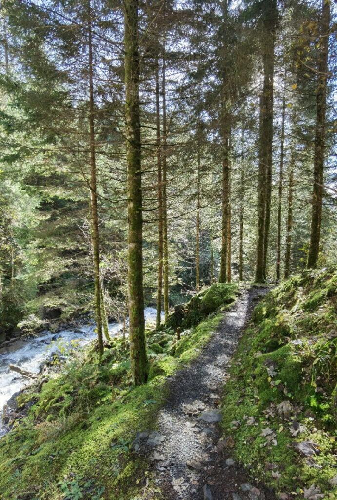 Schluchtweg Millstatt - Idylle im Wald und am Wasser