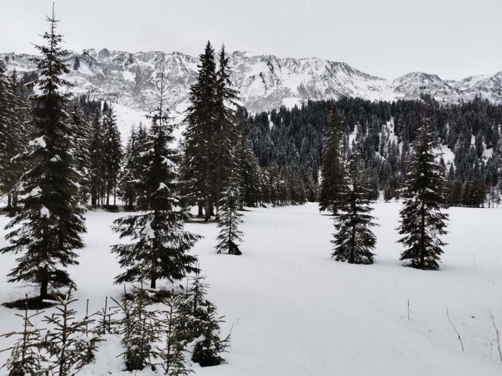 Schwarzwassertal Winteridylle im Kleinwalsertal