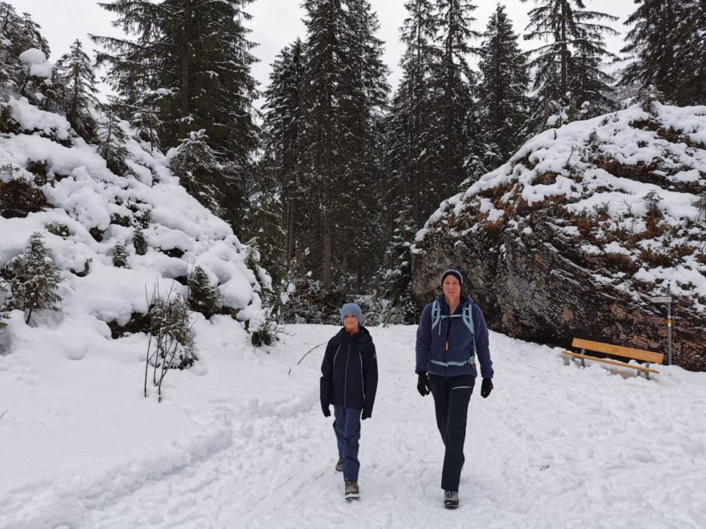Schwarzwassertal wandern - durch den Wald, vorbei an großen Steinbrocken