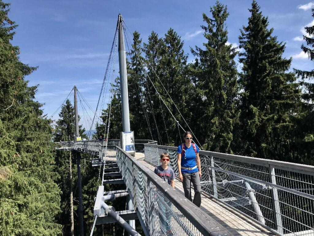 Das Herz im Skywalk Scheidegg - der Baumwipfelpfad
