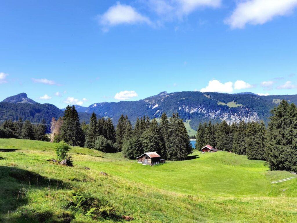 Ausblick am Söllereck Richtung Kleinwalsertal