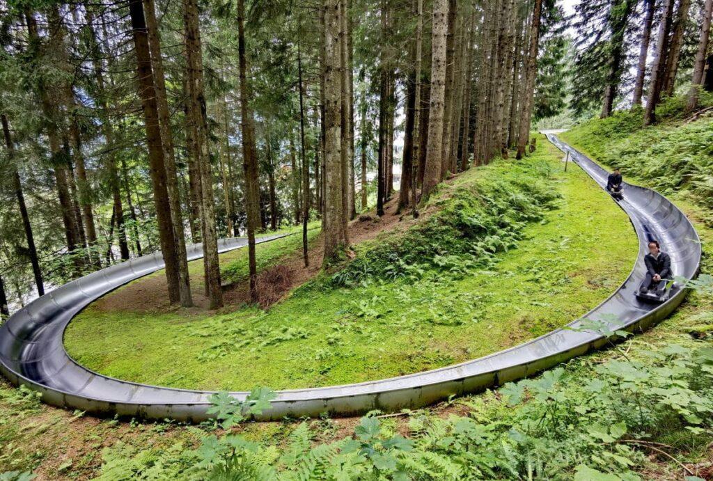 Top Ausflug: Sommerrodelbahn Laterns