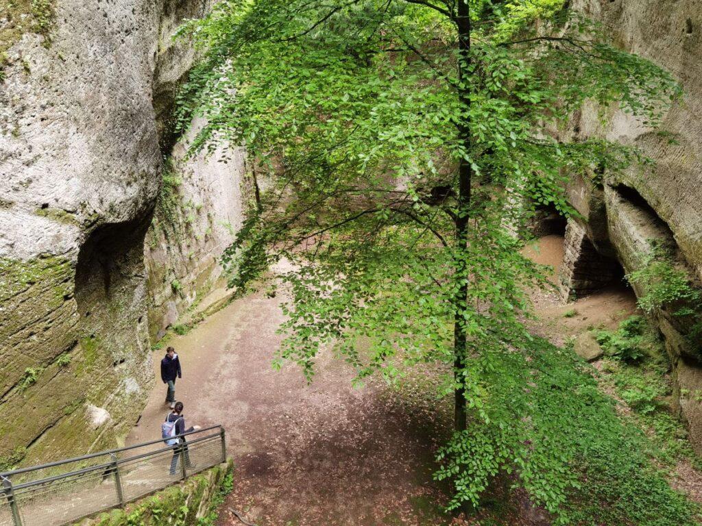 Hinunter ins Steintheater in Salzburg - ein Naturwunder in der Stadt