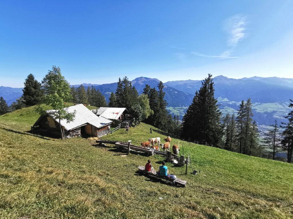 Tirol wandern mit Kindern - die Waldhorbalm