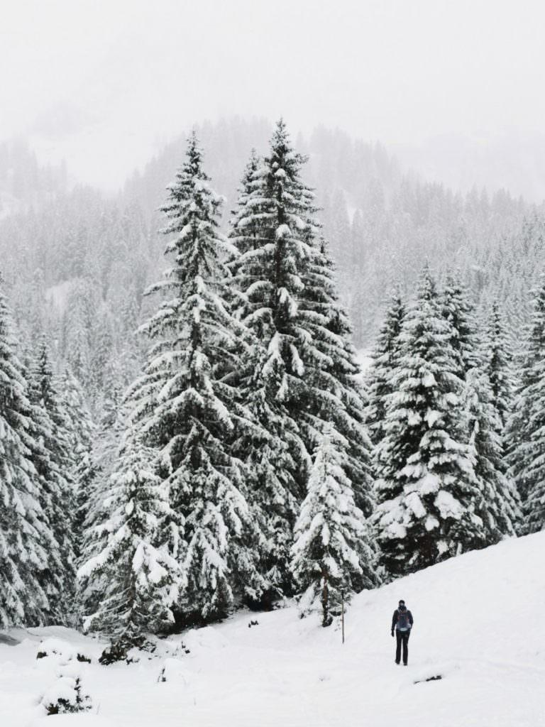 Winterwandern Kleinwalsertal - so schön mit Neuschnee!