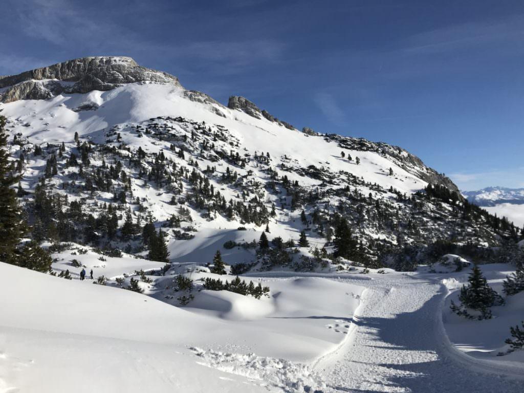 Winterlandschaft erleben