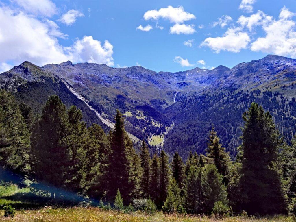 Zirbenweg Innsbruck mit dem Blick in die Tuxer Alpen